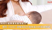 寶寶喝母乳能打造最完整免疫力!《Cell》詳解母乳中營養怎麼補