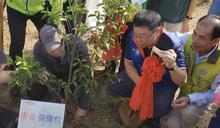 黃偉哲帶頭種植原生種植物 (圖)