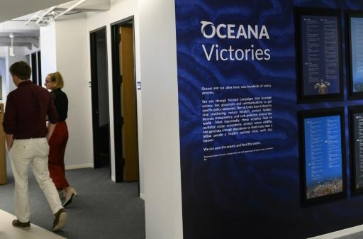 Oceana developed a system that monitors the movements of 70,000 fishing vessels around the world