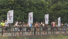 國慶鳥準時來報到 上千隻灰面鷲過境屏東