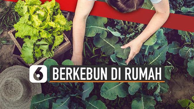 VIDEO: Berkebun di Rumah, 'New Normal' Kemandirian Pangan