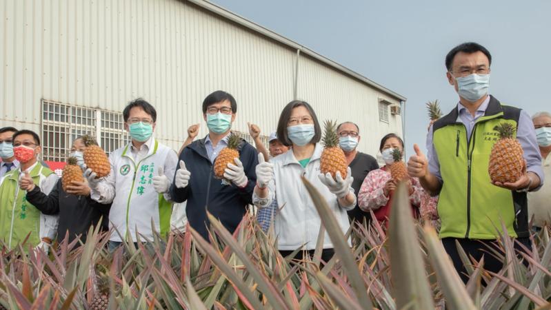 中國大陸禁我鳳梨,你覺得是政治動作或是病蟲害的問題?