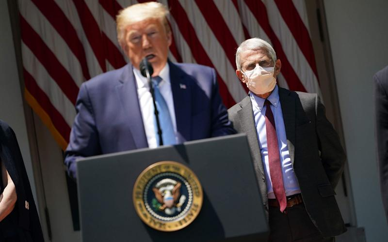 Donald Trump and one of his top disease advisers Dr Anthony Fauci - MANDEL NGAN/AFP via Getty Images