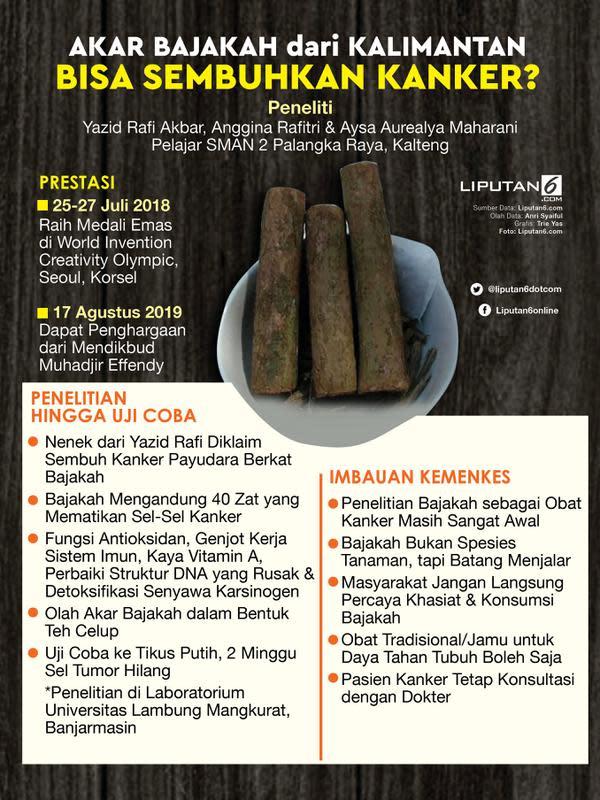 Infografis Akar Bajakah dari Kalimantan Bisa Sembuhkan Kanker? (Liputan6.com/Triyasni)