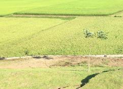 我們的願望,是農地上不再有工廠