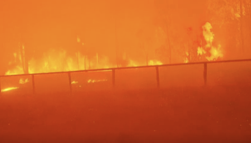 A wall of fire pictured near Rappville. Source: ABC