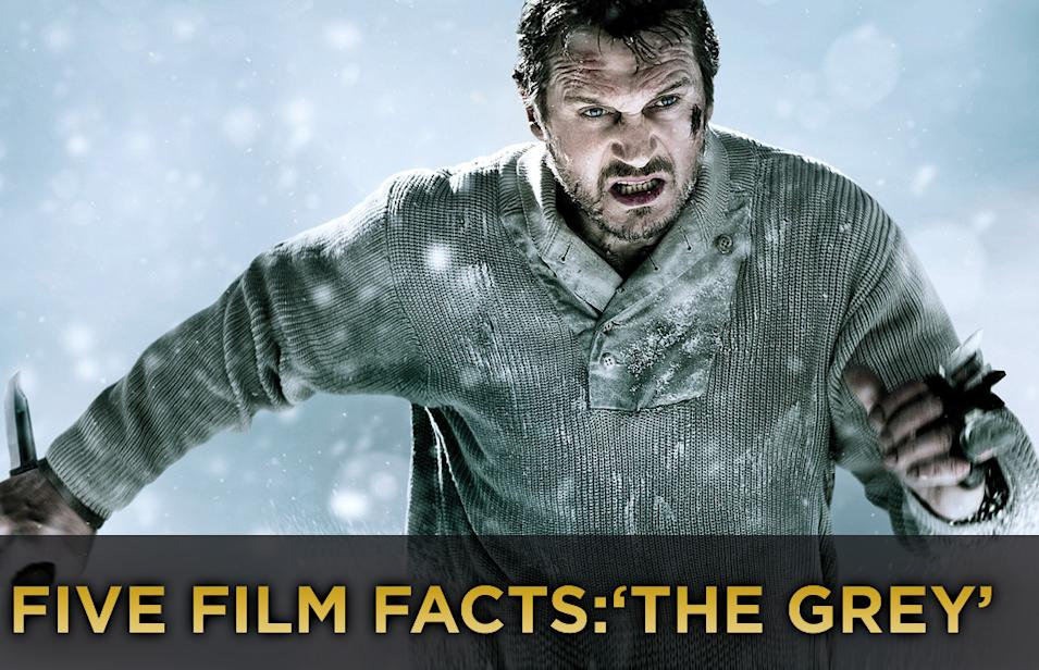 Five Film Facts The Grey