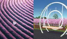「桃園仙草花節」打造5.8公頃超仙氣紫色空間、週邊7大展區超好拍~粉紫色夢幻花海快閃16天!