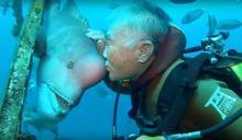 餵螃蟹救一命!潛水爺爺吻怪魚,守30年深海友情