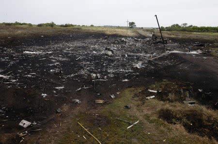 Debris is pictured at the site of Thursday's Malaysian Airlines Boeing 777 plane crash, near the village of Grabovo in the Donetsk region