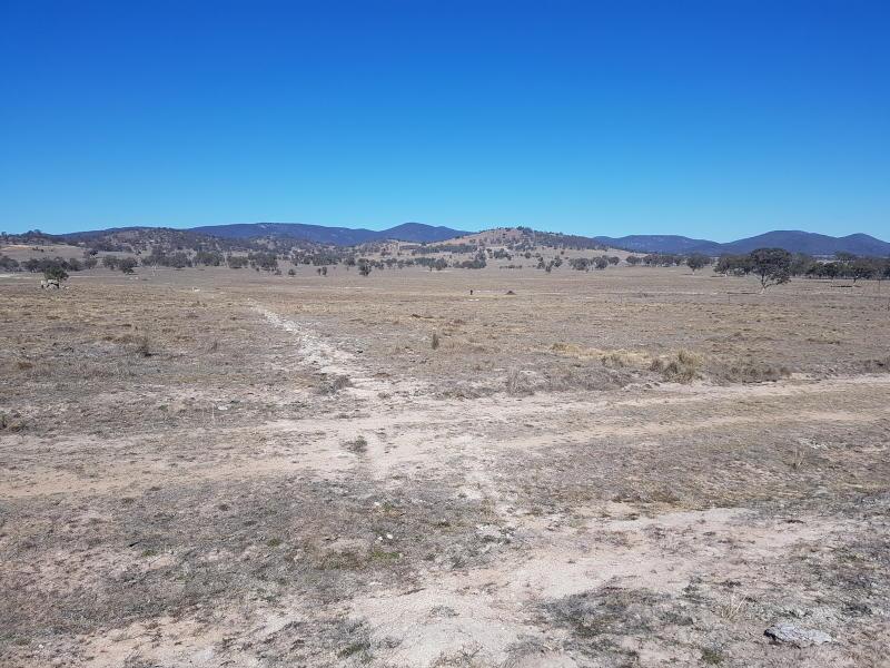 An empty, bare, dusty paddock.