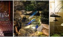 北投溫泉博物館22歲!山、泉、石藝術裝置「蘊藏」自然美景