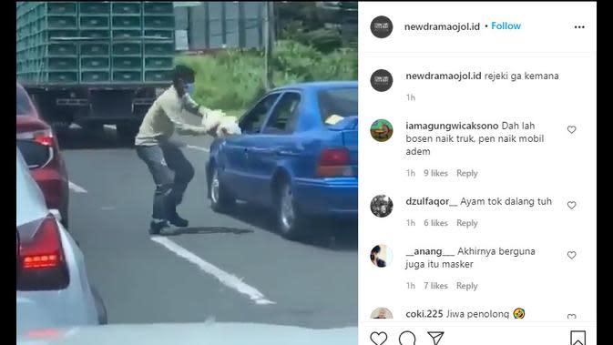 Pria Ini Tangkap Ayam Kabur di Tengah Kemacetan