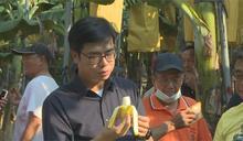 搶救蕉價大作戰!陳其邁:加強網購和出口