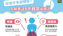 水喝不多卻頻尿?可能是這4大器官出狀況