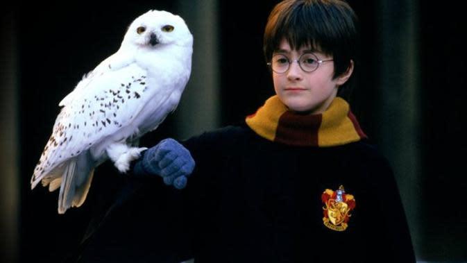 Wajah kecil Daniel Radcliffe dan ekspresinya yang sudah pasti bikin kamu gemas. (Warner Bros.)