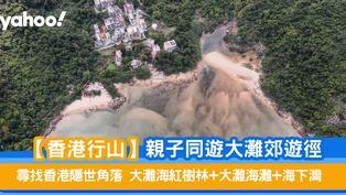 【香港行山】親子同遊大灘郊遊徑 尋找香港隱世角落:大灘海紅樹林+大灘海灘 +海下灣