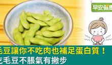 外銷綠金別錯過!就算不吃肉,也能幫你補到蛋白質