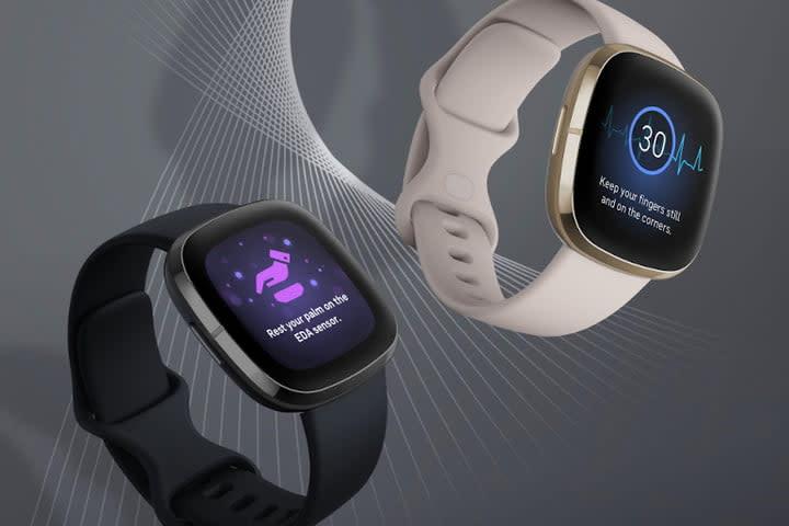 Fitbit Sense special features