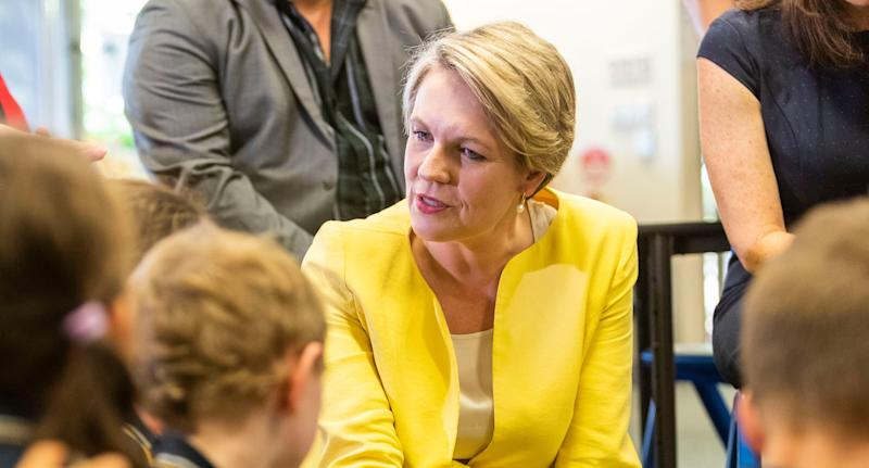 Tanya Plibersek Will Not Contest The Labor Leadership