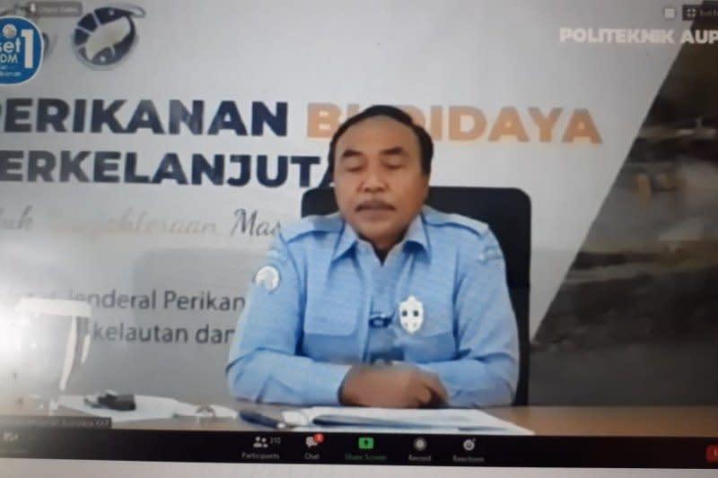 KKP buat Sukabumi jadi percontohan budidaya udang berkelanjutan