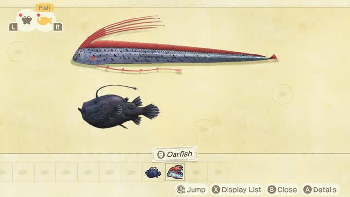 Animal Crossing rare fish guide