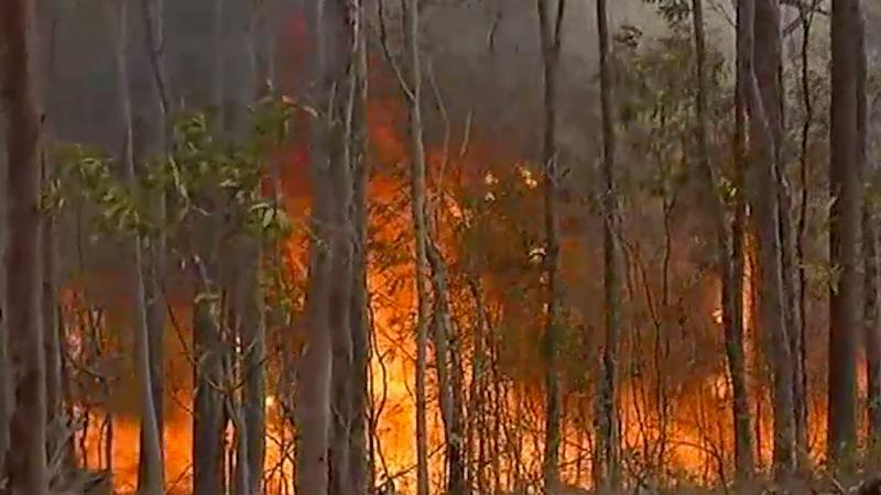 Fires have already destroyed one home in Queensland and bushfires continue to spread 'quickly' in NSW. Source: ABC News.