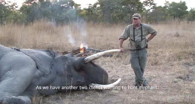 Theunis Botha poses with a kill in an image from one of his YouTube videos.
