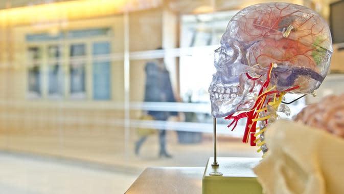 Ilustrasi kematian otak (Dok.Unsplash.com)