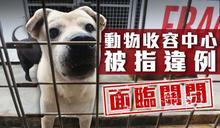 政府政策僵化 坪輋動物收容中心200貓狗恐被人道毀滅