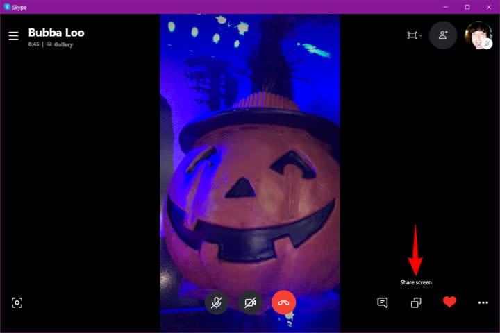 Skype Desktop Share Screen Icon