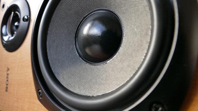 Jenis-jenis Speaker (sumber: Pixabay)