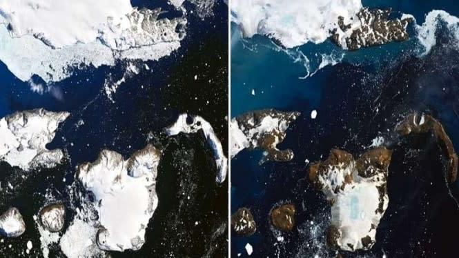 Mengerikan, Separuh Lapisan Es Antartika Bisa Runtuh dalam Sekejap