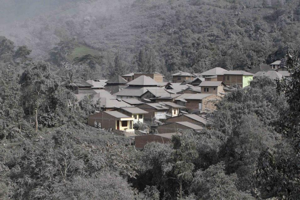 The ash from Sinabung volcano covers trees and houses at Mardingding village