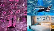 「免費水族館門票」可拿!住這家飯店「專屬場次」和企鵝、鯊魚打卡