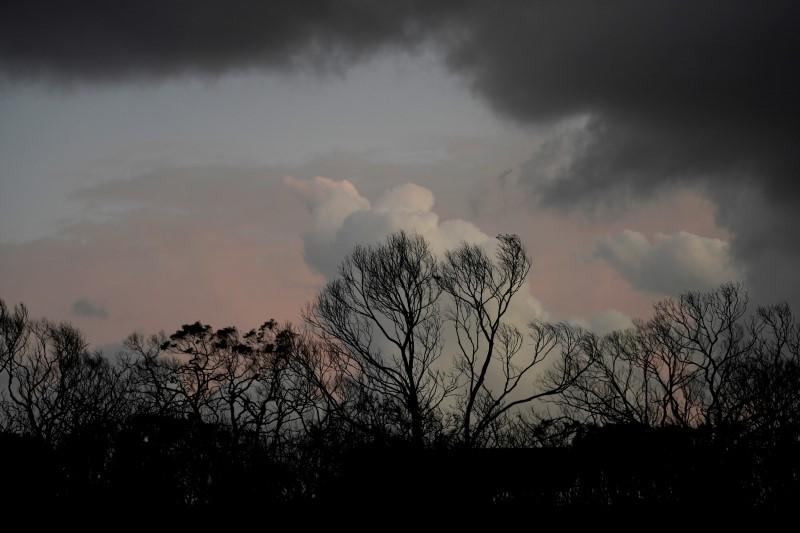 Bushfires in Kangaroo Island, Australia
