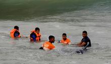 斯里蘭卡大規模領航鯨擱淺 120頭獲救2頭傷重死亡