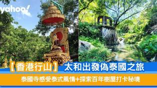【香港行山】太和出發偽泰國之旅 泰國寺感受泰式風情+探索百年樹屋打卡秘境