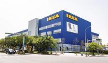 IKEA內湖店開幕!獨家「鯊鯊包」吸客 Uber祭百元優惠