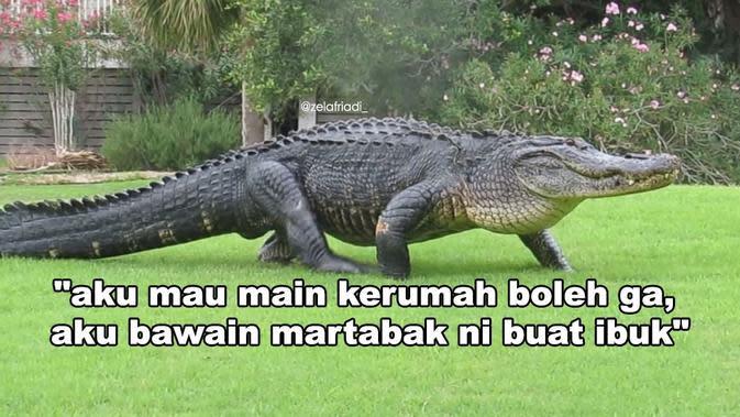 Jangan sampai tertipu, ini modus buaya darat ala netizen. (Sumber: Twitter/@@zelafriadi_)