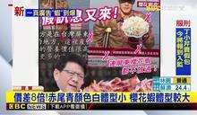 一頁廣告賣山寨「櫻花蝦皮」潘孟安批:假訊息又來