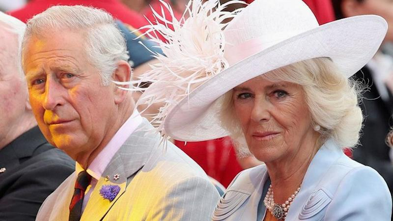 References to the title Princess Consort have been removed from the website. Photo: Getty
