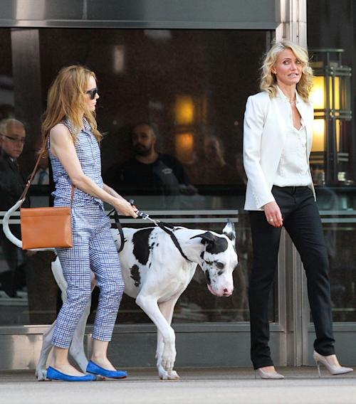 "Cameron Diaz and Leslie Mann have an argument while shooting, along with a large dog on the set of ""The Other Woman"" in Downtown Manhattan, NYC"