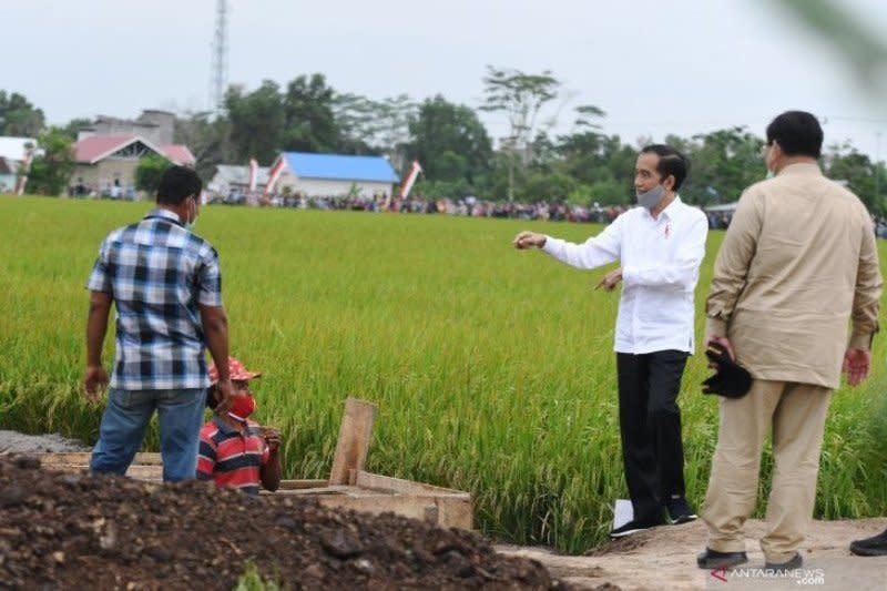 Legislator: Agrikultur jadi kekuatan baru perekonomian di era COVID-19