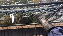 幼童吊橋上墜落身亡,誰該負責?