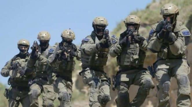 VIVA Militer: Pasukan elite Tentara Pertahanan Israel (IDF), Sayeret Matkal