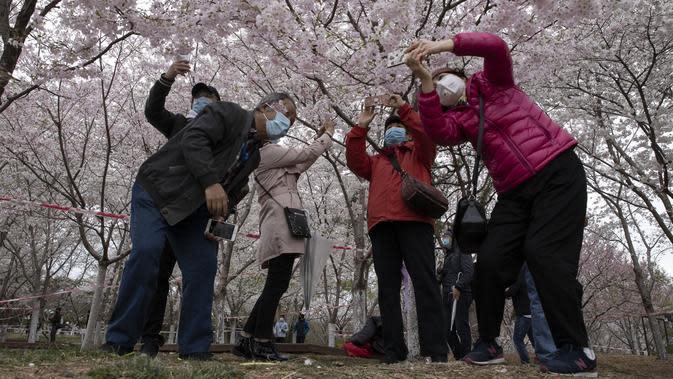 Para pengunjung yang mengenakan mesker mengambil gambar bunga sakura di Taman Yuyuantan, Beijing, China, Kamis (26/3/2020). Musim semi dan bunga sakura bermekaran memikat warga untuk keluar rumah dari yang sebelumnya membatasi diri karena pandemi virus corona COVID-19. (AP Photo/Ng Han Guan)