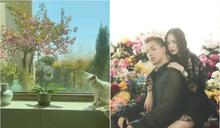 BIGBANG太陽曬愛巢 造花園賞夜景