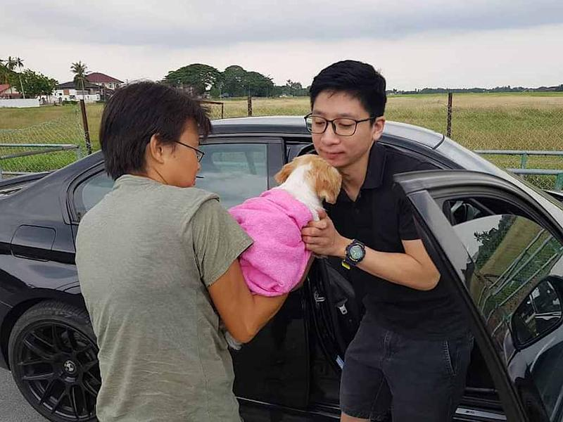 Independent rescuer Joanne Low handing over an abandoned Shih Tzu now renamed Jasmine to her new owner. Jasmine was previously dumped by her owner at Manjung, Perak. — Photo courtesy of Joanne Low