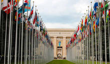 你適合進聯合國工作嗎?有這背景先贏一半?